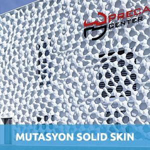 solid skin beton